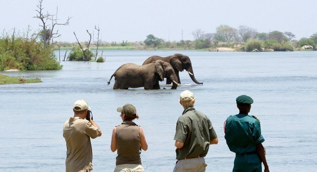 Elefanten im Majete Wildschutzgebiet