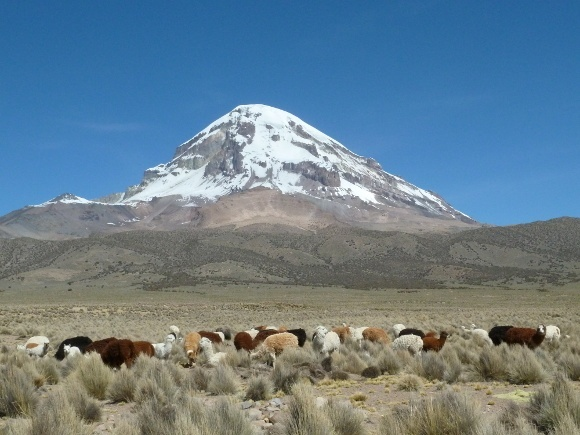 The Sajama volcano in Bolivia