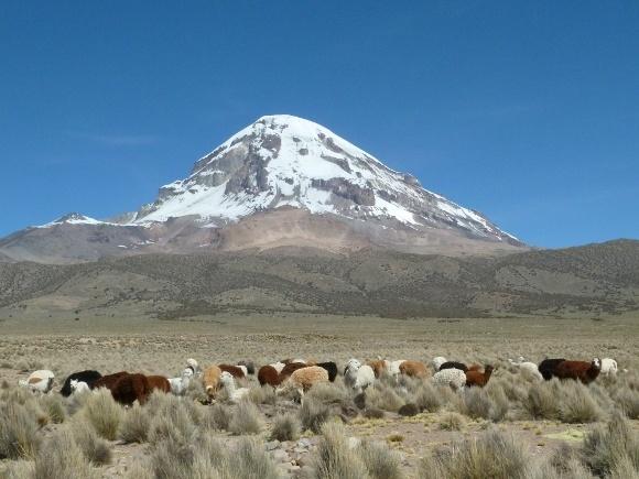 The Sajama volcano in Bolivia
