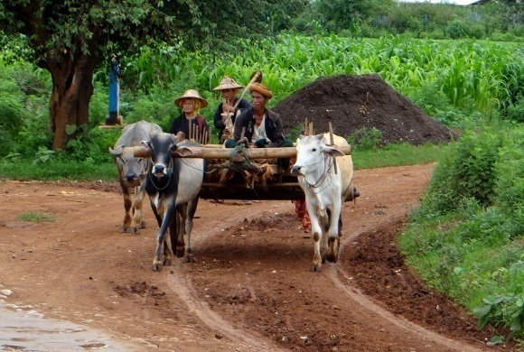 The Lu'ha Tribes on the Road to Mandalay in Myanmar