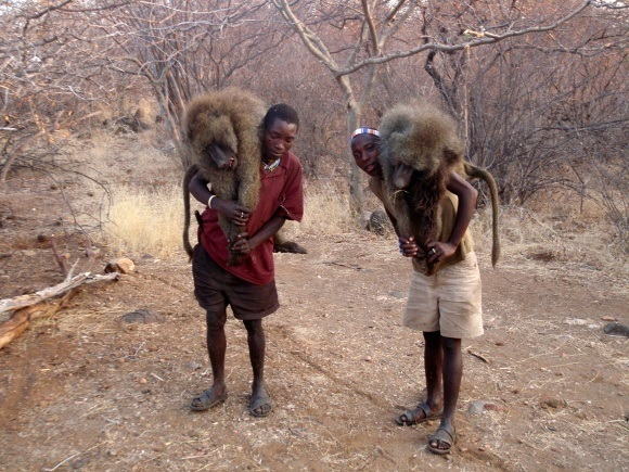 Natural Hunters: The Hadza Bushmen of Tanzania