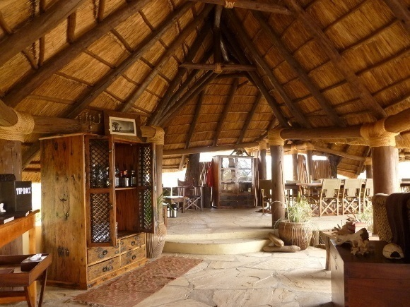 Our Pick: Five Enchanting Great Migration Camps