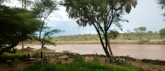Wild & Tranquil Africa: Game Safaris in Kenya Uncovered