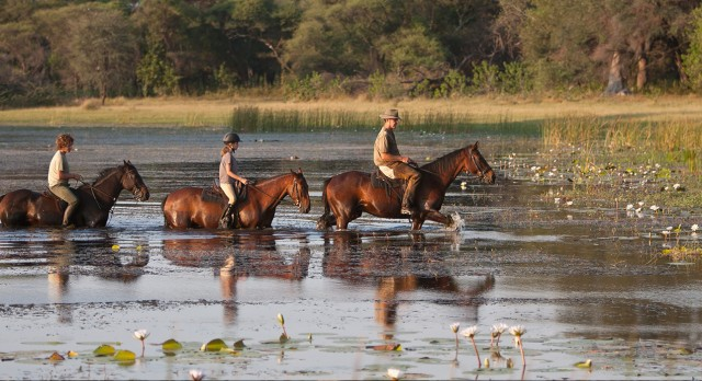Horseback safaris in Botswana with Enchanting Travels