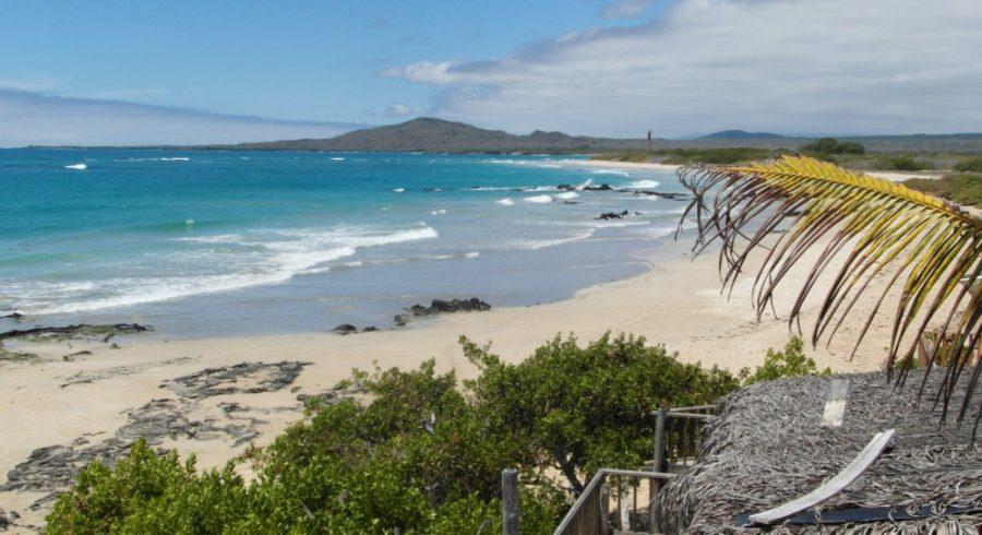 Sandstrand am Hafen von Villamil, Galapagos